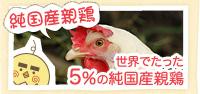 純国産鶏 世界でたった5%の純国産鶏